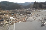 Japan Tohoku Earthquake